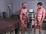 Horny Black Stud Gets Two Guys Off